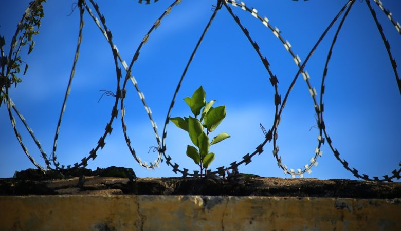 China Prison reported 500 coronavirus cases