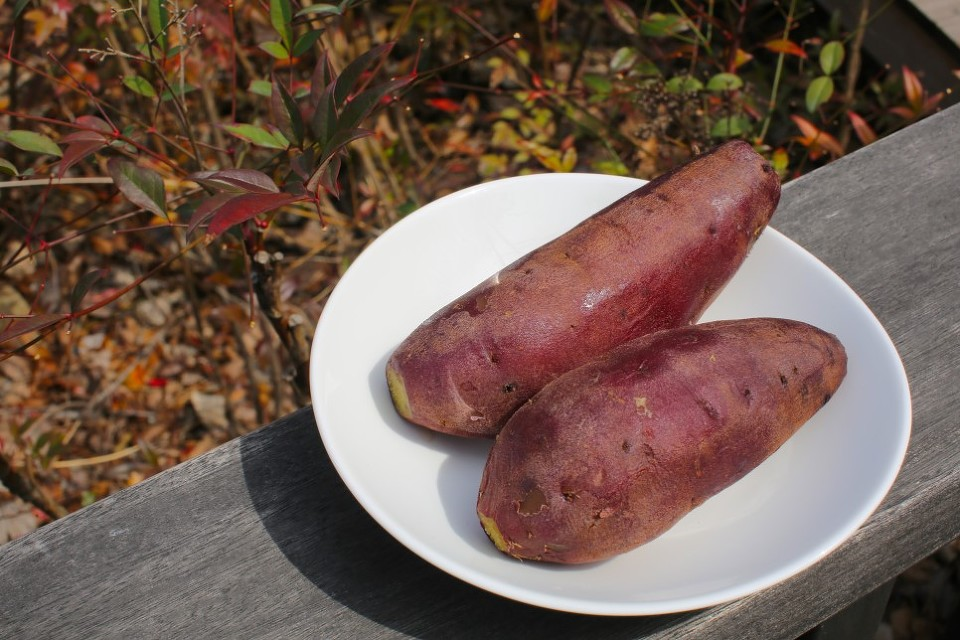Sweet potatoes are a high carb food as well as  source of pro-vitamin A, vitamin C and potassium, and antioxidants.
