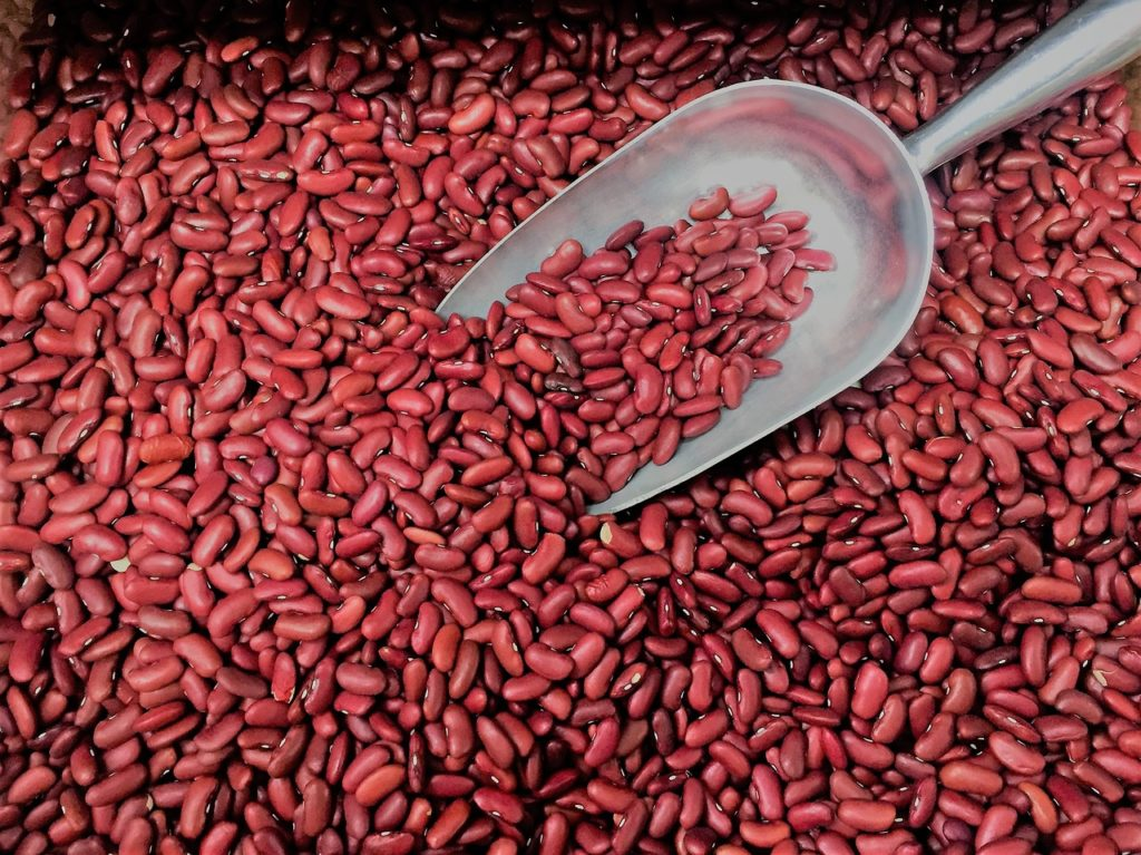 Kidney Beans are the best source of high carb diet