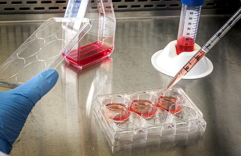 COVID19 vaccine update